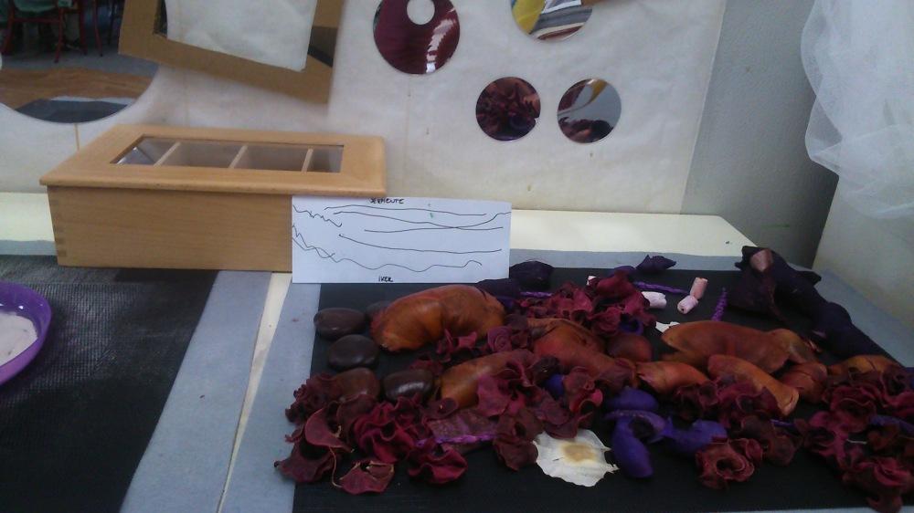 Composiciones naturaleza Reggio Emilia